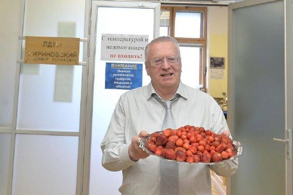Жириновский поспорил с Грудининым о ЧМ-2018 и выиграл центнер клубники